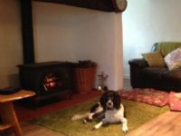 Blanketts Dog Friendly Cottage Williton, Somerset